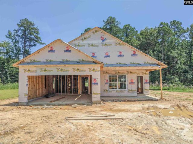 221 Elsoma Drive, Chapin, SC 29036 (MLS #474189) :: Fabulous Aiken Homes & Lake Murray Premier Properties