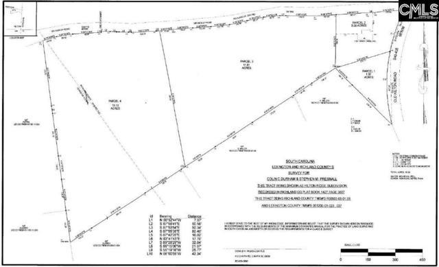 Sid Bickley Road, Chapin, SC 29036 (MLS #474287) :: Fabulous Aiken Homes & Lake Murray Premier Properties
