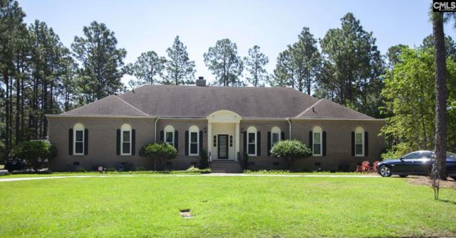 309 Wood Duck Road, Columbia, SC 29223 (MLS #474339) :: EXIT Real Estate Consultants