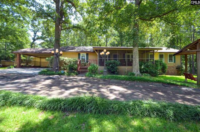 221 Bethview Drive, Irmo, SC 29063 (MLS #474394) :: Fabulous Aiken Homes & Lake Murray Premier Properties