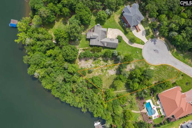 165 Summer Bay Drive, Chapin, SC 29036 (MLS #474911) :: Resource Realty Group