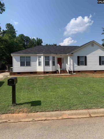 370 Firebridge Drive, Chapin, SC 29036 (MLS #474927) :: EXIT Real Estate Consultants