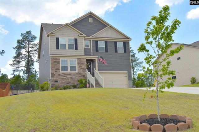 148 Cassique Drive, Lexington, SC 29073 (MLS #474959) :: EXIT Real Estate Consultants