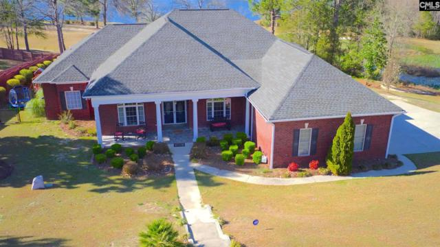 140 Indian River Drive, West Columbia, SC 29170 (MLS #474968) :: EXIT Real Estate Consultants