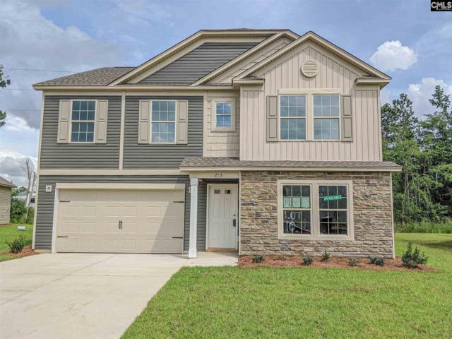 213 Elsoma Drive, Chapin, SC 29036 (MLS #474989) :: EXIT Real Estate Consultants