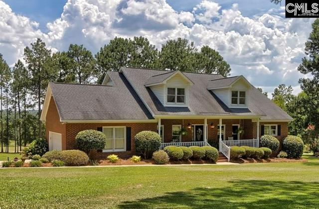 213 Skylight Dr, West Columbia, SC 29170 (MLS #475099) :: The Olivia Cooley Group at Keller Williams Realty