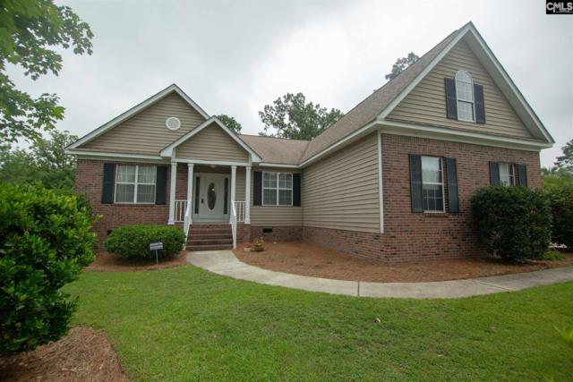 1 Wildhorse Court, Irmo, SC 29063 (MLS #475106) :: EXIT Real Estate Consultants