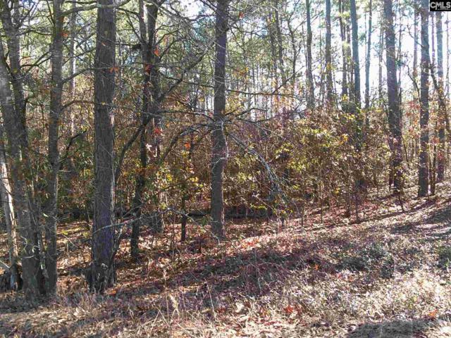 0 Decie Road, Leesville, SC 29070 (MLS #475110) :: EXIT Real Estate Consultants