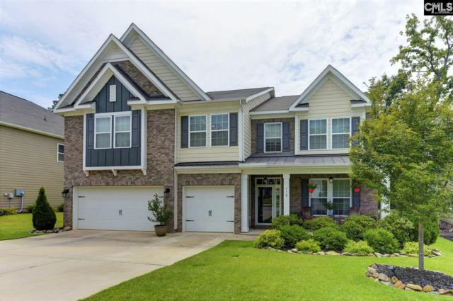 578 Eagles Rest Drive, Chapin, SC 29036 (MLS #475163) :: EXIT Real Estate Consultants