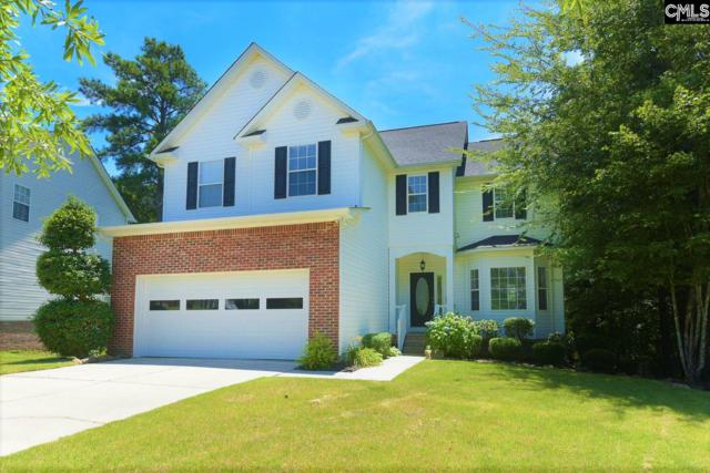 97 Hollenbeck Road, Irmo, SC 29063 (MLS #475168) :: The Olivia Cooley Group at Keller Williams Realty