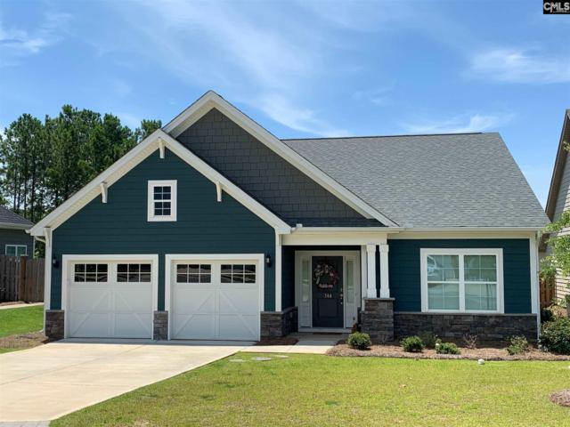 744 Xander Way, Chapin, SC 29036 (MLS #475188) :: Home Advantage Realty, LLC