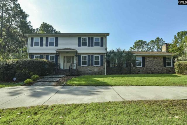 133 Southlake Road, Columbia, SC 29223 (MLS #475249) :: EXIT Real Estate Consultants