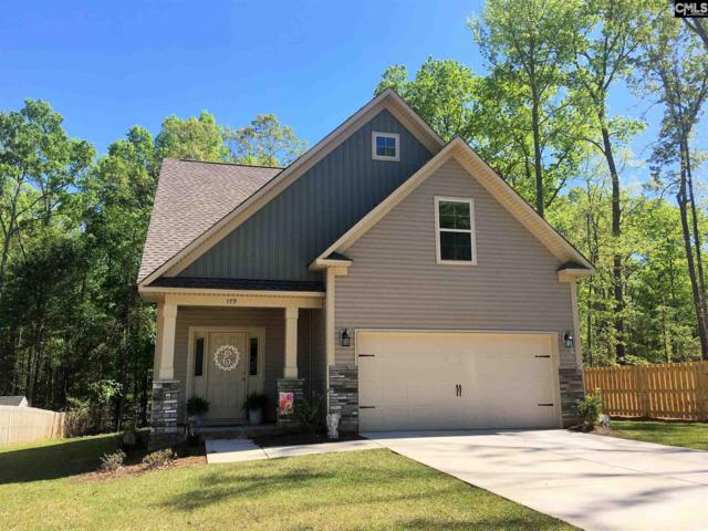 316 Dolly Horn Lane, Chapin, SC 29036 (MLS #475337) :: EXIT Real Estate Consultants