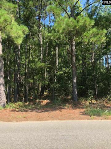 1111 Crossing Creek Road, Hopkins, SC 29061 (MLS #475418) :: The Meade Team