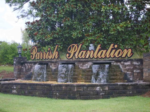 219 Plantation Court, West Columbia, SC 29170 (MLS #475450) :: EXIT Real Estate Consultants