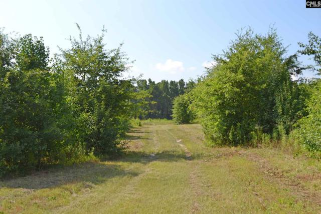 5004 Augusta Highway, Leesville, SC 29070 (MLS #475564) :: EXIT Real Estate Consultants