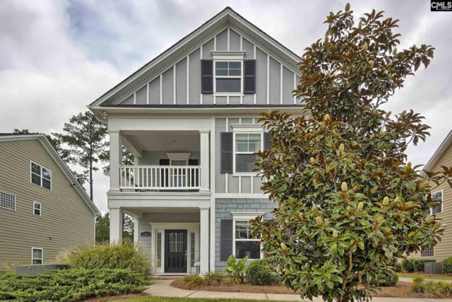 761 Moonsail Circle, Chapin, SC 29036 (MLS #475589) :: Home Advantage Realty, LLC