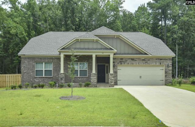 143 Cedar Chase Lane, Irmo, SC 29063 (MLS #475627) :: EXIT Real Estate Consultants