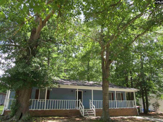 202 Snow Lane, Lexington, SC 29073 (MLS #475655) :: EXIT Real Estate Consultants