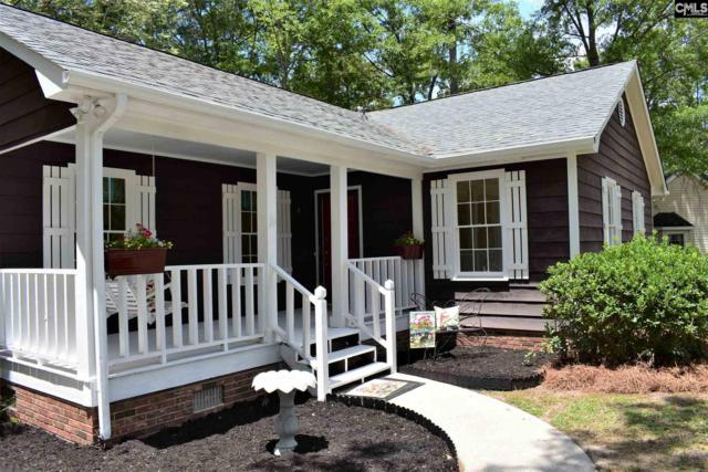120 River Song Road, Irmo, SC 29063 (MLS #475670) :: EXIT Real Estate Consultants