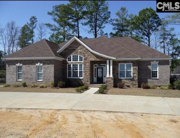 151 Brody Road, Chapin, SC 29036 (MLS #475676) :: Resource Realty Group