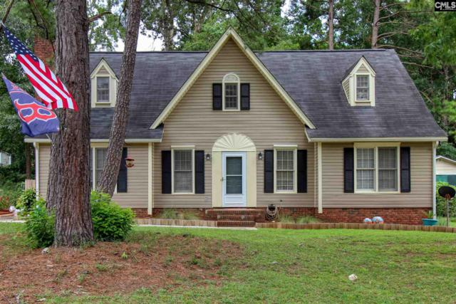 220 Gales River Road, Irmo, SC 29063 (MLS #475731) :: EXIT Real Estate Consultants