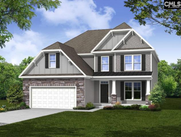 223 Laurelbrook Drive, Chapin, SC 29036 (MLS #475738) :: EXIT Real Estate Consultants