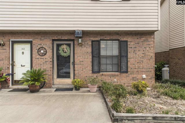 4 Misti Court, Cayce, SC 29033 (MLS #475844) :: EXIT Real Estate Consultants