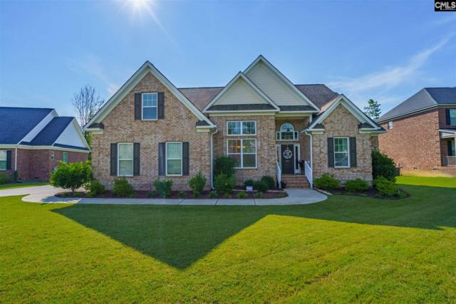 147 Renard Way, Gilbert, SC 29054 (MLS #475874) :: EXIT Real Estate Consultants