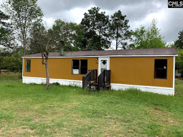 108 Ann Street, Pelion, SC 29123 (MLS #475904) :: EXIT Real Estate Consultants