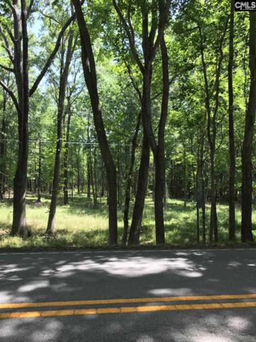 Lot 3 Long Pine Road, Chapin, SC 29036 (MLS #475949) :: EXIT Real Estate Consultants