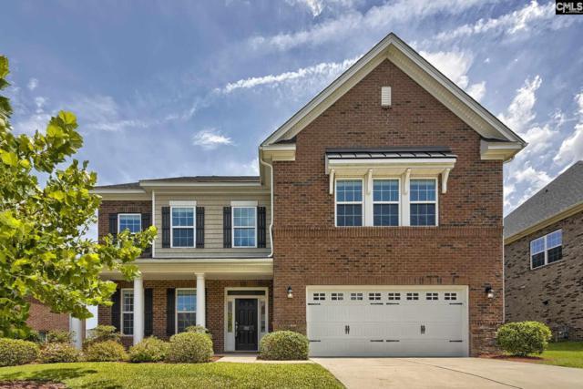 312 Asa Rose Lane, Lexington, SC 29072 (MLS #475999) :: EXIT Real Estate Consultants