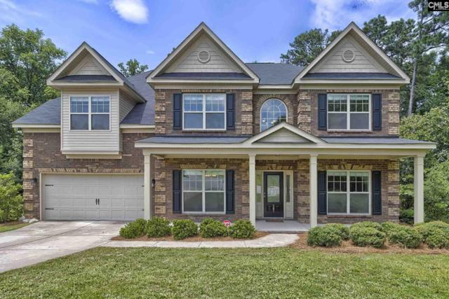 587 Briar Jump Lane, Blythewood, SC 29016 (MLS #476008) :: EXIT Real Estate Consultants
