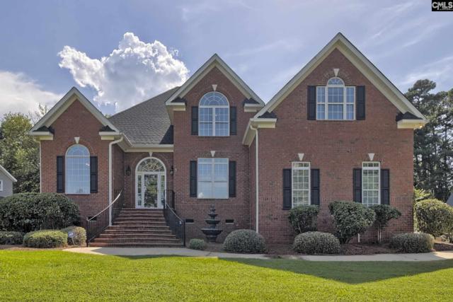 114 Lake Vista Drive, Chapin, SC 29036 (MLS #476044) :: EXIT Real Estate Consultants