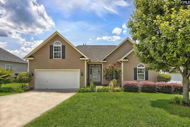 253 Melann Pass, Lexington, SC 29073 (MLS #476046) :: EXIT Real Estate Consultants