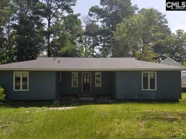 100 Penny Lane, Lexington, SC 29073 (MLS #476079) :: EXIT Real Estate Consultants