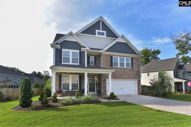 598 Eagles Rest Drive, Chapin, SC 29036 (MLS #476087) :: The Neighborhood Company at Keller Williams Palmetto