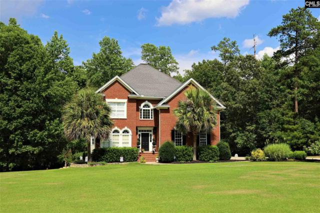 544 Peachland Drive, Gilbert, SC 29054 (MLS #476112) :: Resource Realty Group