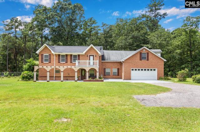 601 Appaloosa Drive, Hopkins, SC 29061 (MLS #476138) :: The Meade Team