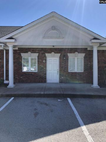 109 Vista Oaks Drive, Lexington, SC 29072 (MLS #476152) :: Home Advantage Realty, LLC