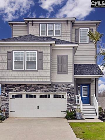 141 Sunset Bay Lane, Lexington, SC 29072 (MLS #476174) :: EXIT Real Estate Consultants