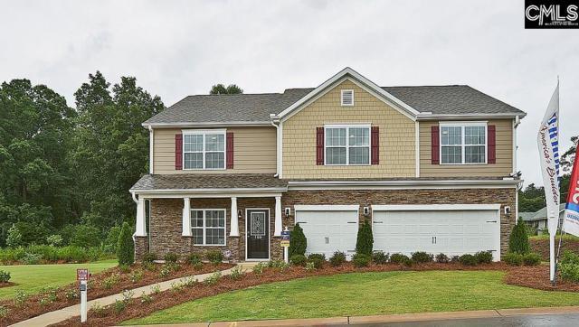 191 Esso Lane, Elgin, SC 29045 (MLS #476195) :: EXIT Real Estate Consultants