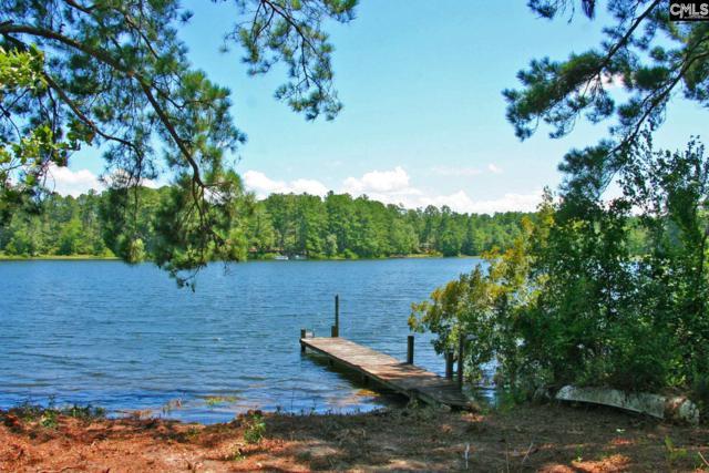 833 Edisto Lake Road, Wagener, SC 29164 (MLS #476240) :: Fabulous Aiken Homes & Lake Murray Premier Properties