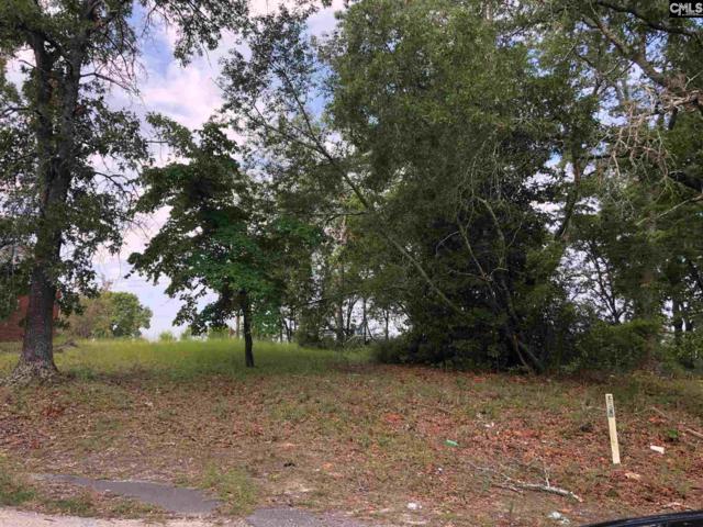 167 Rimer Pond Road, Blythewood, SC 29016 (MLS #476250) :: The Meade Team