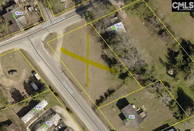 0 Double Branch Road, West Columbia, SC 29169 (MLS #476347) :: Resource Realty Group