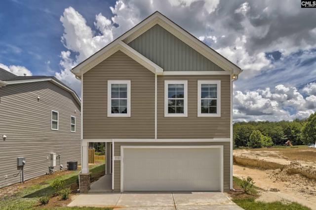 345 Nehemiah Road, Lexington, SC 29072 (MLS #476400) :: The Olivia Cooley Group at Keller Williams Realty