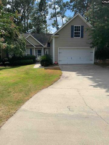 320 Tisbury Court, Lexington, SC 29072 (MLS #476455) :: Home Advantage Realty, LLC