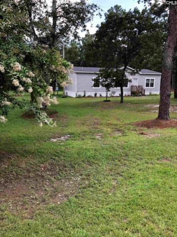 107 Country Haven Court, Gilbert, SC 29054 (MLS #476531) :: EXIT Real Estate Consultants