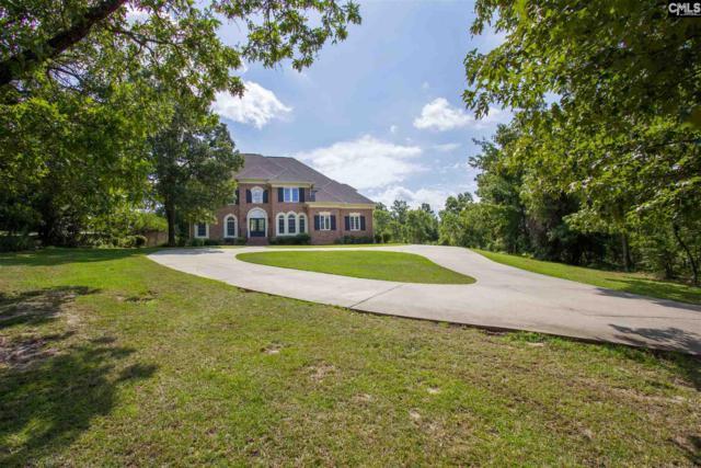 9 Pocosin Court, Elgin, SC 29045 (MLS #476555) :: EXIT Real Estate Consultants