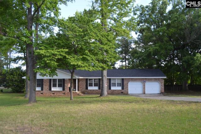 201 Lordship Lane, Irmo, SC 29063 (MLS #476721) :: EXIT Real Estate Consultants